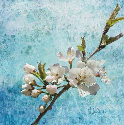 Wild Blossoms Digital Painting