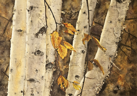 Birch Watercolour Painting
