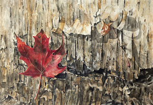 Maple Leaf on Birch Watercolour painting