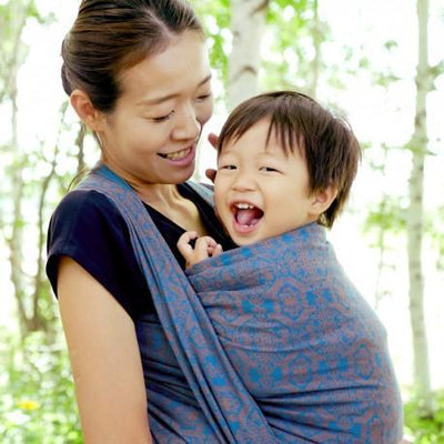 Didymos Baby Woven Wrap Jacquard Ludwig-Woven Wrap-Didymos- Little Zen One US Babywearing baby carriers
