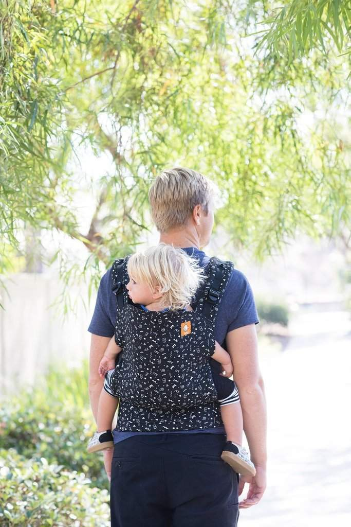 Tula Toddler Carrier Celebrate-Buckle Carrier-Baby Tula- Little Zen One US Babywearing baby carriers