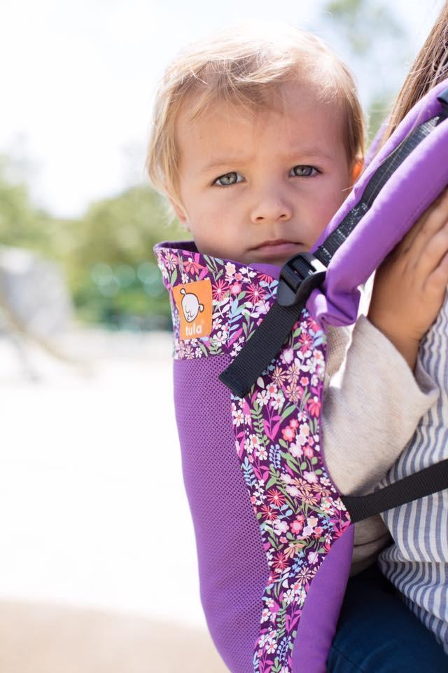 Tula Toddler Carrier Coast Hyacinth-Buckle Carrier-Baby Tula- Little Zen One US Babywearing baby carriers