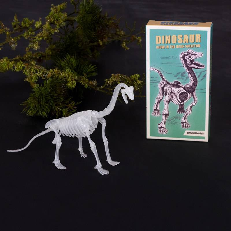 Assorted dinosaur skeleton kits.