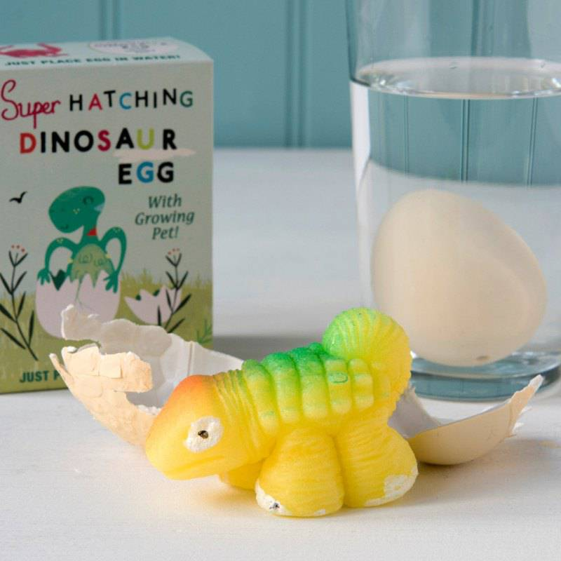 Hatch your own dinosaur egg.