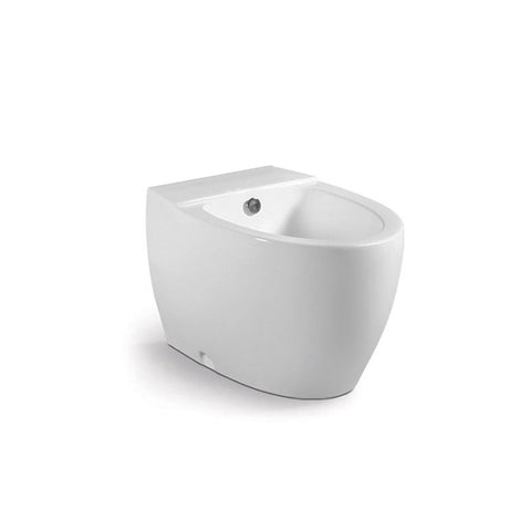 DAX Ceramic Freestanding Elongated Bidet, White Finish, Height 14-15/16 Inches (BSN-1101)
