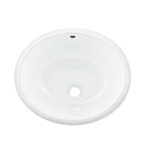 DAX Ceramic Oval Single Bowl Undermount Bathroom Sink, White Finish,  18-1/16 x 15-13/16 x 8-3/16 Inches (BSN-100)