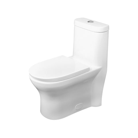 DAX One Piece Oval Toilet with Soft Closing Seat and Dual Flush High-Efficiency, Porcelain, White Finish, Height 29-1/2 Inches (BSN-832)