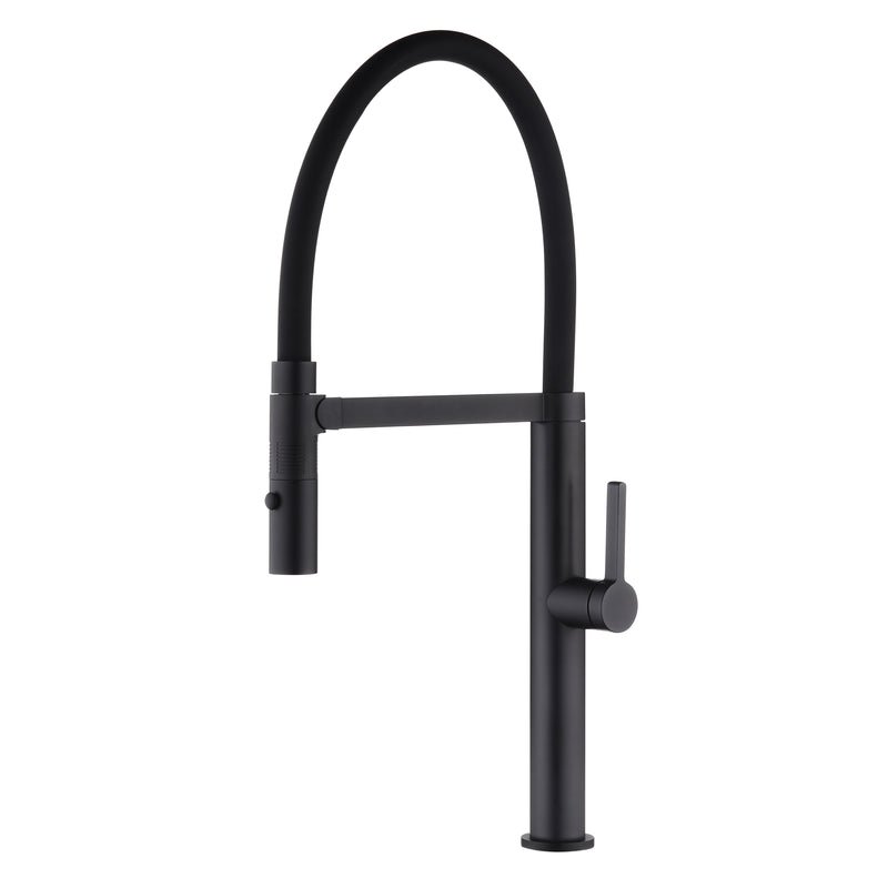 DAX Single Handle Pull Out Kitchen Faucet with Dual Sprayer, Brass Body and Shower Head, Black Finish, 9-3/16 x 21-5/8 Inches (DAX-S2417-02)