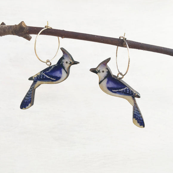 Blue Jay earrings