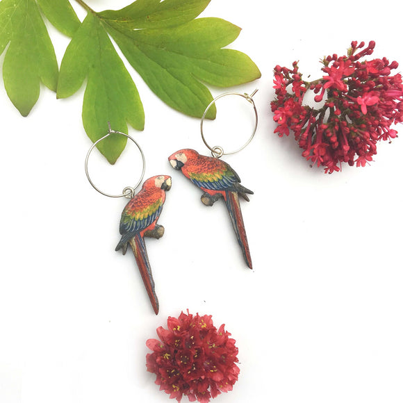 Macaw earrings