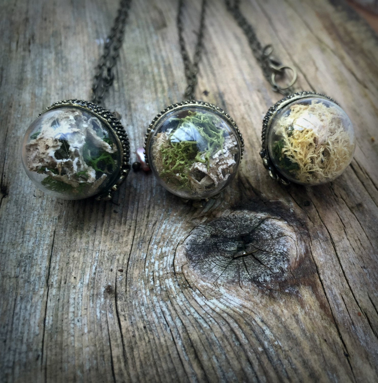 Moss Terrarium Necklace Fen Co