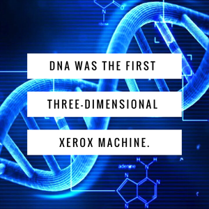 DNA – The First 3-Dimensional Xerox Machine