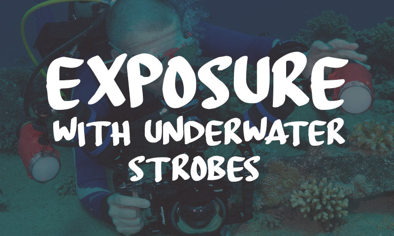 Exposure With Underwater Strobes: Short Beginners Guide