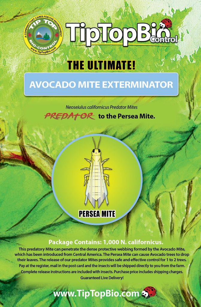 Avocado Mite Exterminator - Mail Back