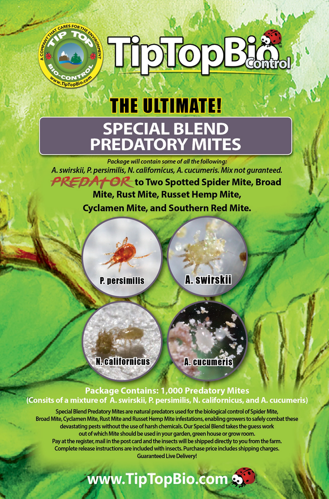 Special Blend Predatory Mites - Mail Back