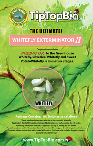 Whitefly Exterminator I - Mail Back