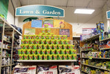 Live Ladybugs - Cup display