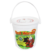 Live Red Worms - Bucket