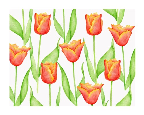 Parrot Tulip Folded Note Cards