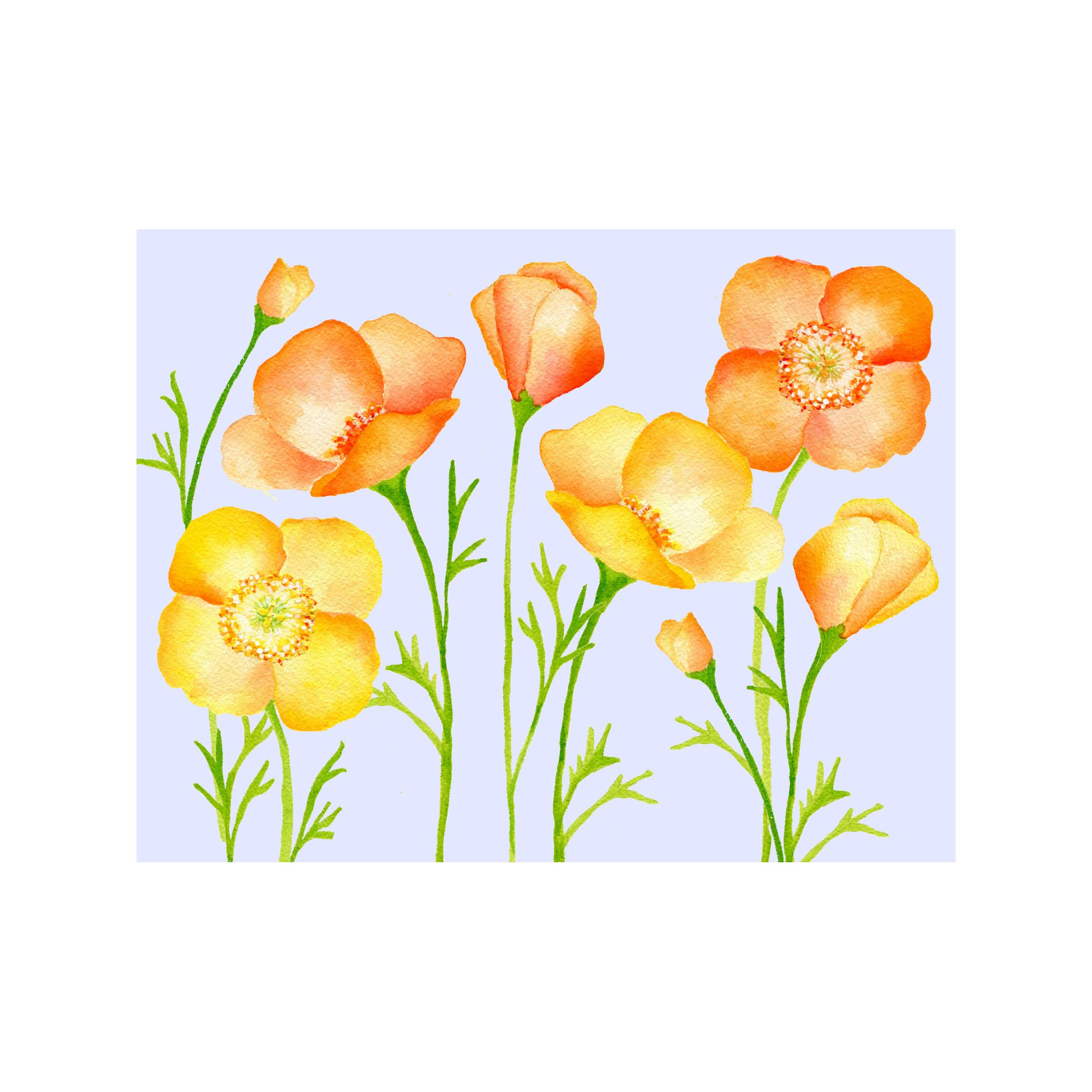 Poppy Floral Folded Note Card
