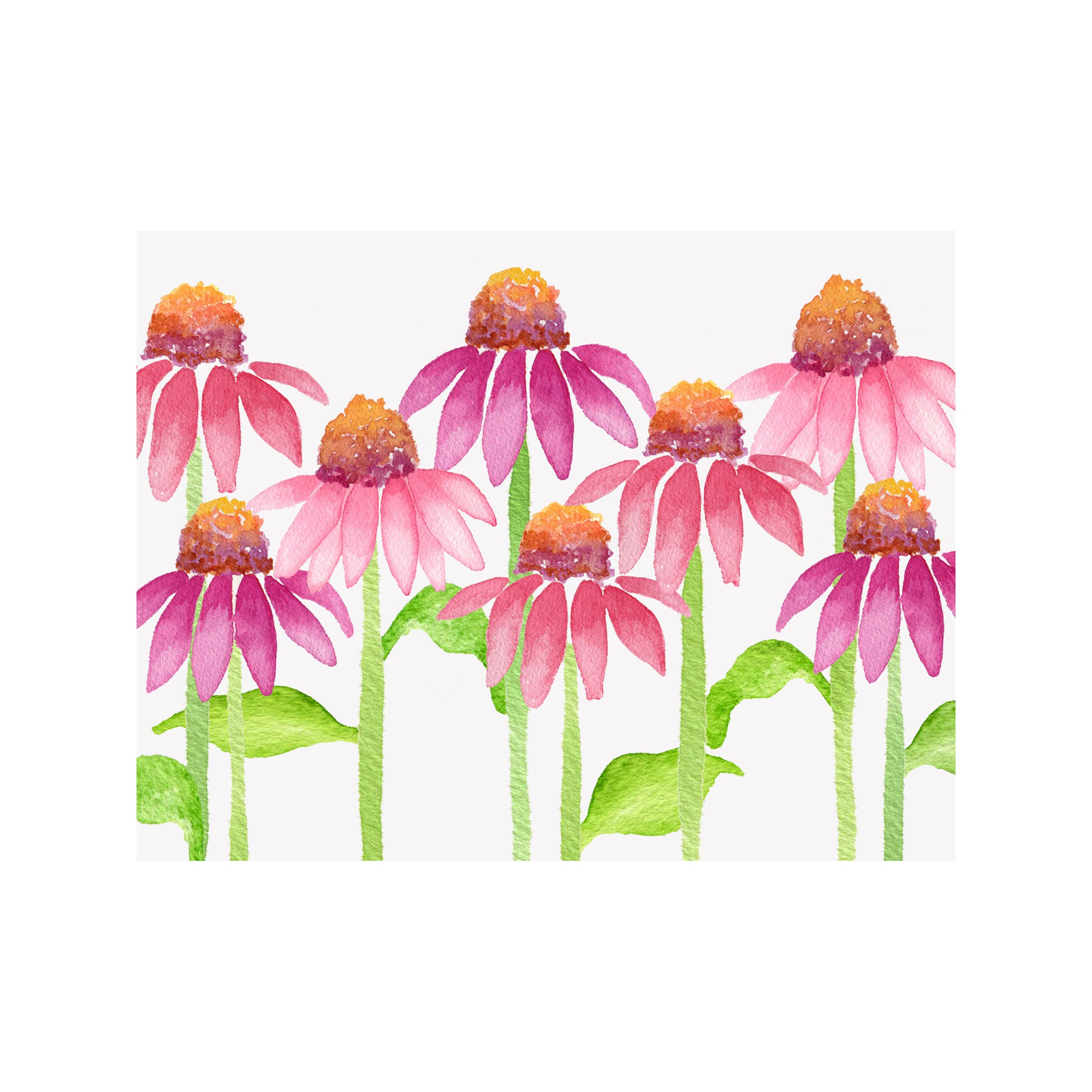 Coneflower Floral Folded Note Card