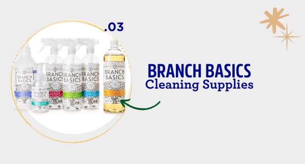 fatco holiday gift guide healthy living guru branch basics cleaner