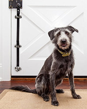 Housetraining Dog Doorbell