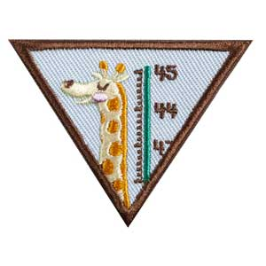 Brownie - My Best Self Badge - 61218