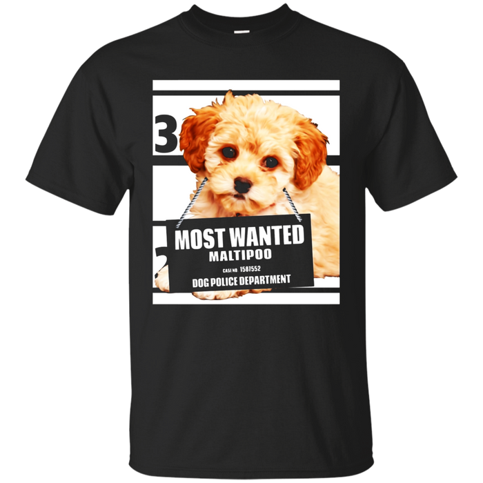 Most Wanted Maltipoo - Maltese Miniature Poodle Dog T-Shirt