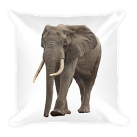 Wild Elephant With Tusks - Square Pillow