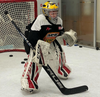 Tendy Training - Shots