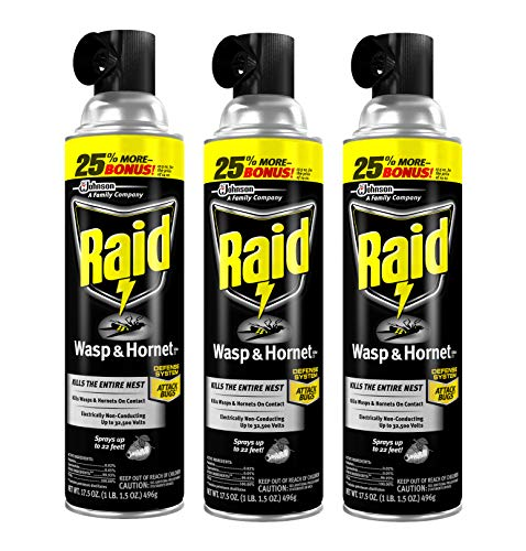 Raid Wasp and Hornet Killer, 17.5-Ounce (Pack - 3)