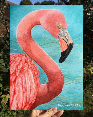 Why did I restart the Flamingo painting?