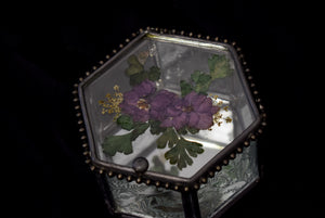 Vintage Etched Glass & Dried Floral Trinket Box