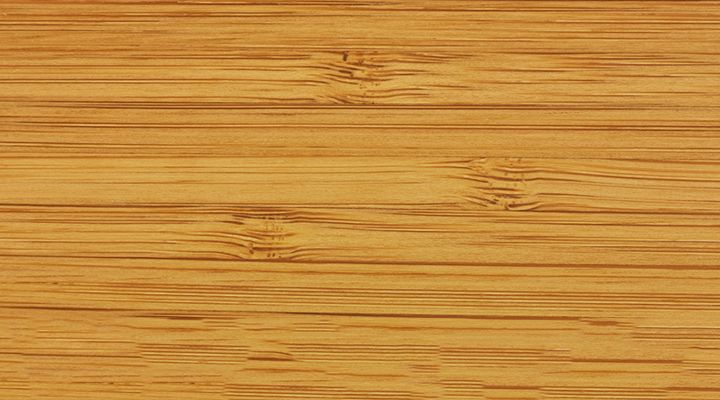 Go Green with Bamboo: Environmentally Friendly Flooring