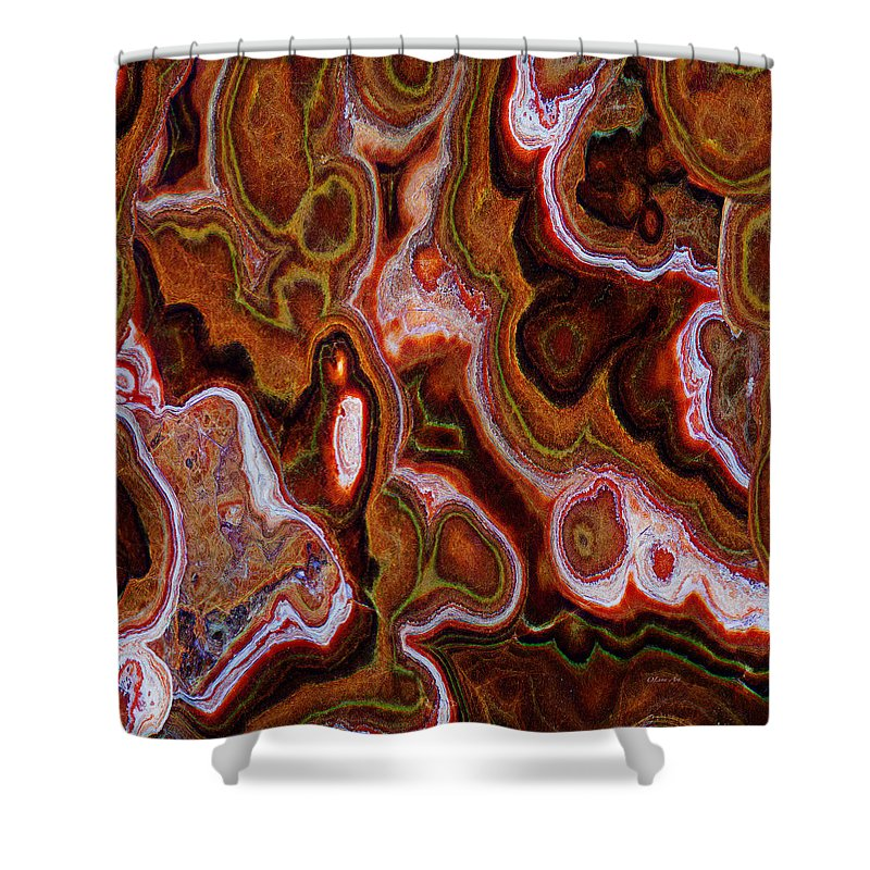 Earth Tones Abstract  - Shower Curtain