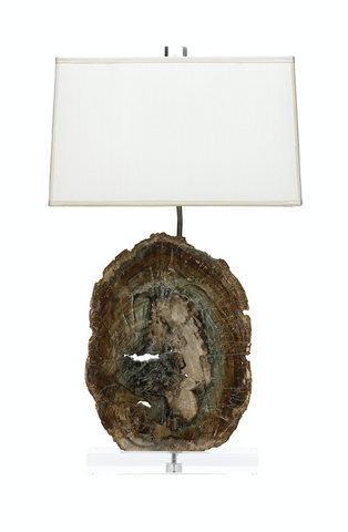 Fossilized Wood Lamp - Brazil