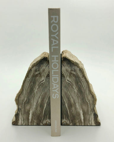 Fossilized Wood Bookends - Medium