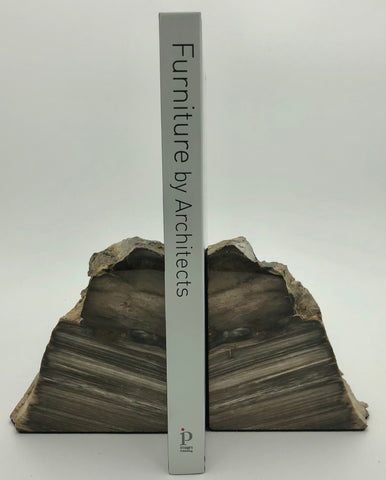 Copy of Fossilized Wood Bookends - Small