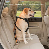 Kurgo Direct to SeatBelt Dog Tether
