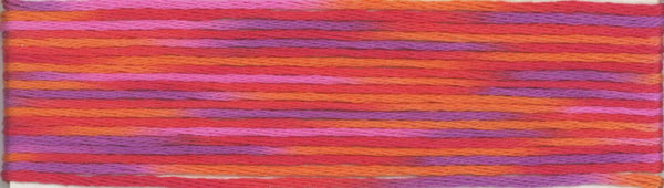 Cosmo Seasons Variegated Embroidery Floss 9000 Series-9016-9017-9018-9019-9020