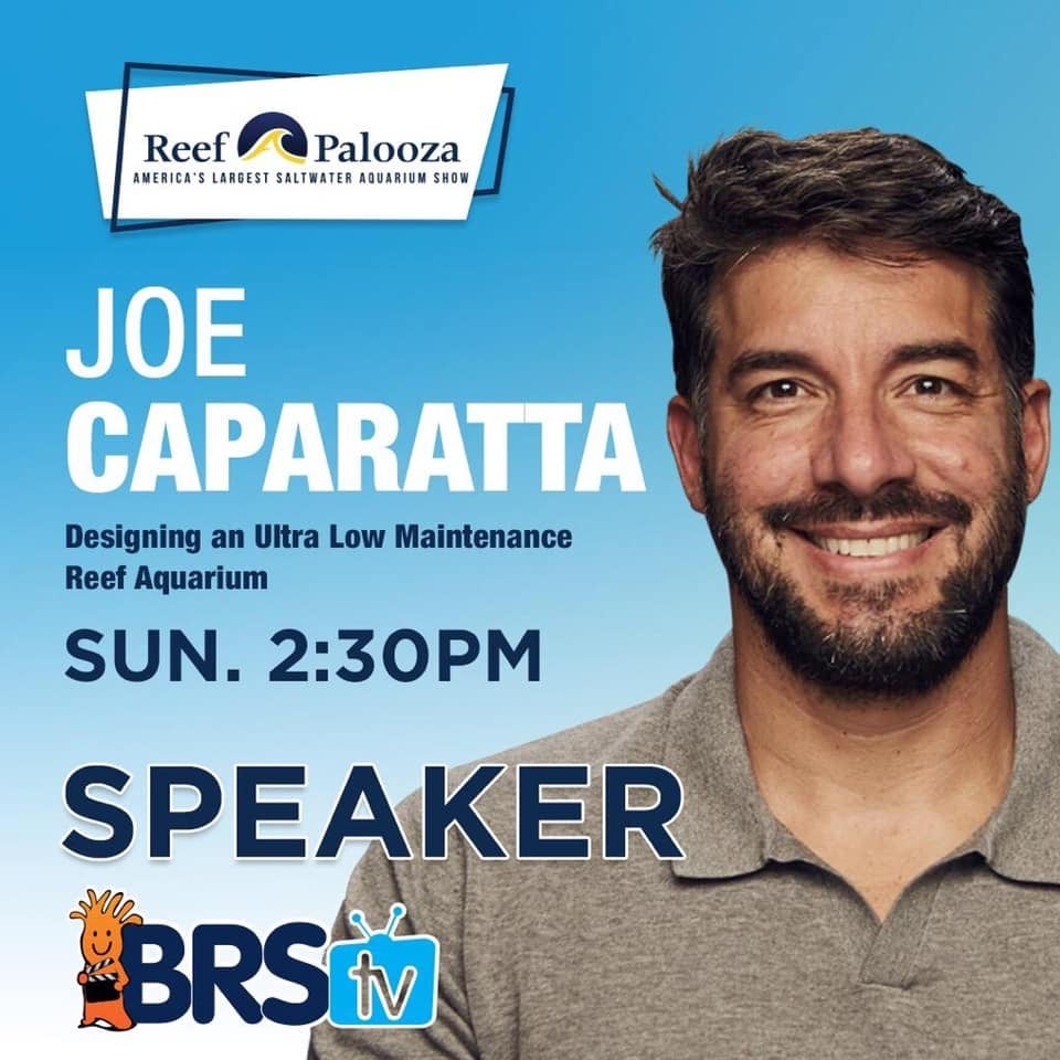 Hooray for Joe! We are proud to see you speak at Reefapalooza Chicago in Octorber