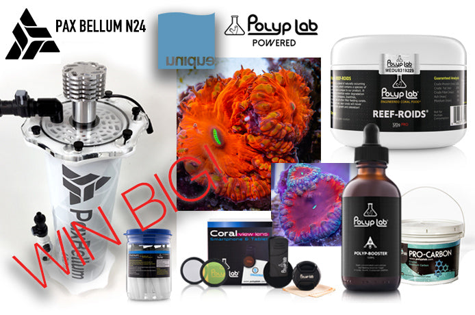 Win 1 year supply of PolypLab, Blasto Pack or Pax Bellum N24! FREE to Enter