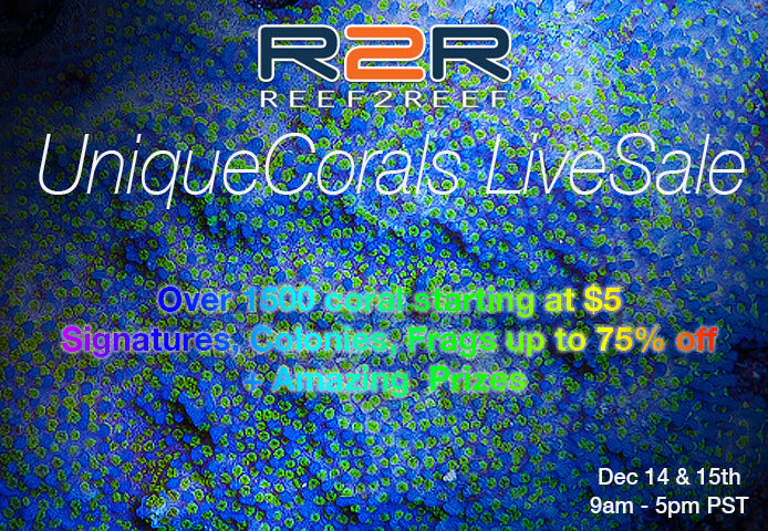 R2R LiveSale December 14 + 15th, 9am to 5pm 2 Days Event