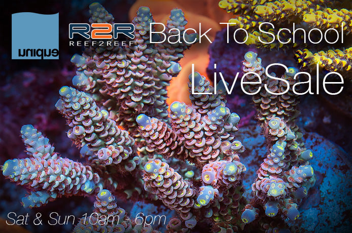 Back To School R2R UC LiveSale! Aug 22 & 23, both days 10am-6pm PST