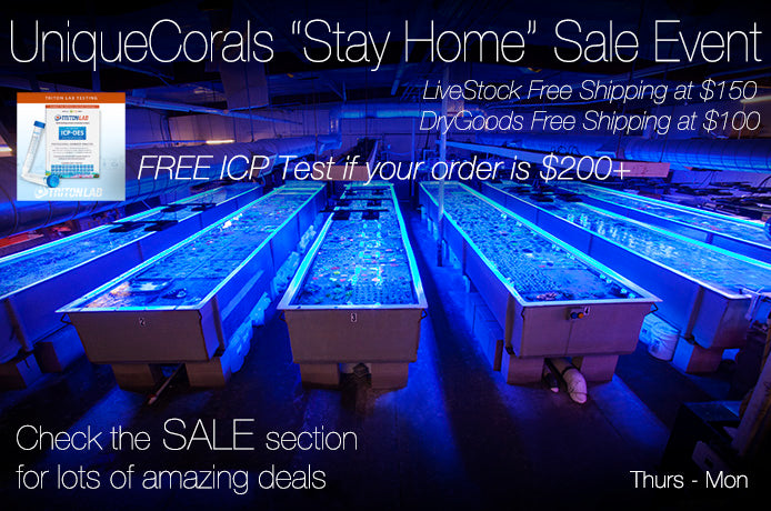 "UC ""Stay-Home"" SALE event coming your way, March 26-30th, FREE ICP Test, Easy Financing, Easter Eggs, UC Rewards"