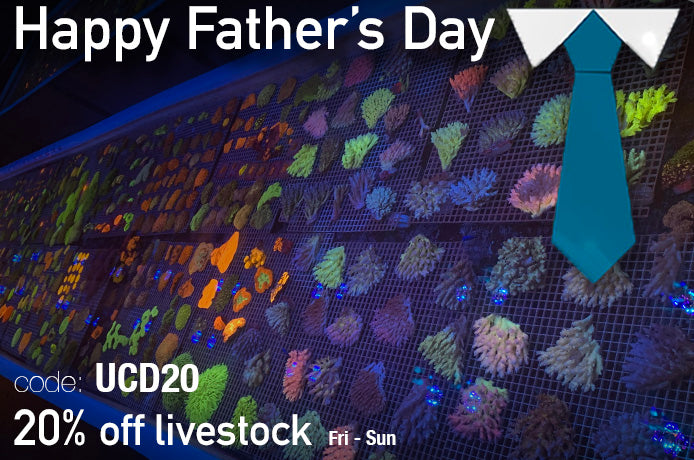 Happy Father's Day! To all the amazing reefing fathers