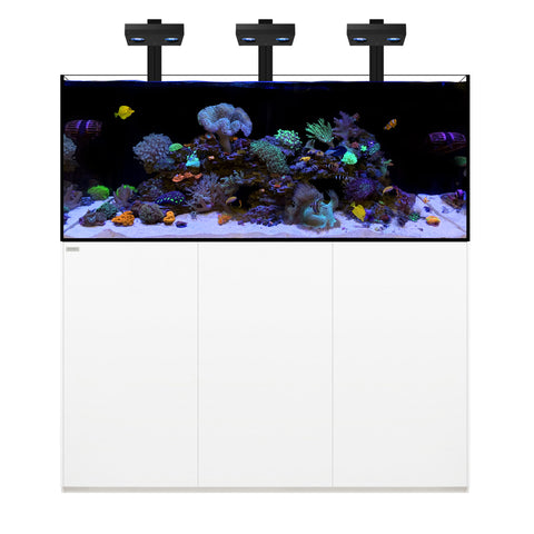 Waterbox Aquariums Reef Pro 180.5 - 180 gallons