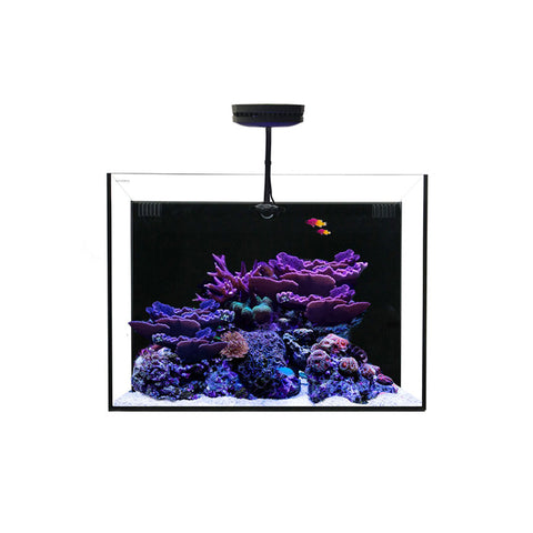 Waterbox All In One Aquariums +Plus HD