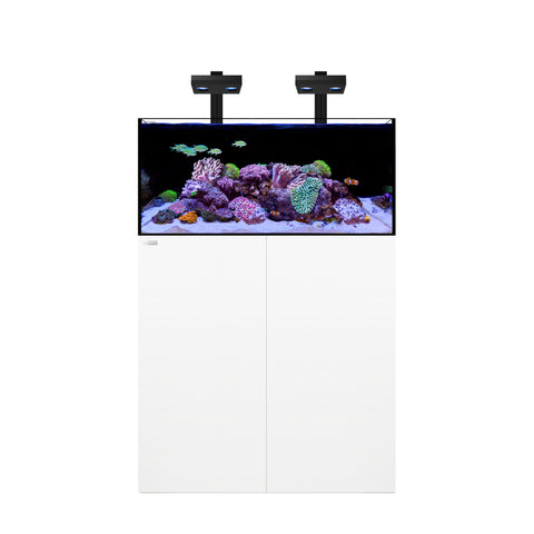 Waterbox Frag Aquariums +Plus HD